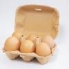 comprar huevos camperos