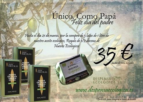 oferta dia del padre copia 1WEB 495x353 - Blog